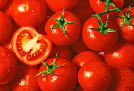 بالصور..تعرف على انواع الطماطم الـ17