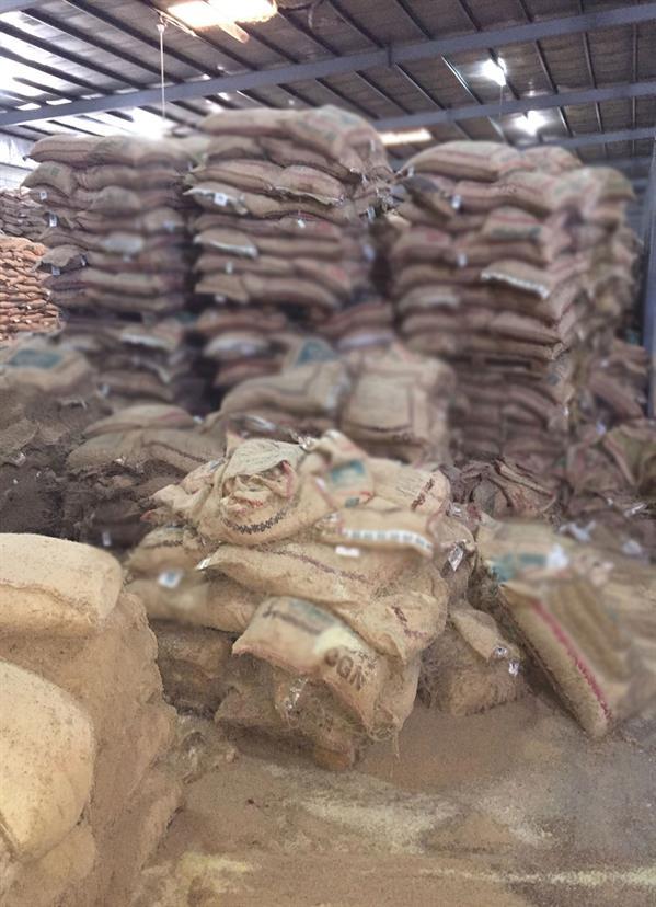 البرلمان يستضيف مسؤولي التجارة للاستفسار عن الرز الفاسد